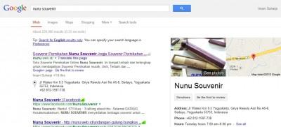 google-seach-nunu